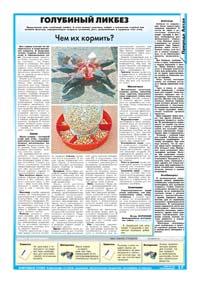 17 страница. Голубиный ликбез