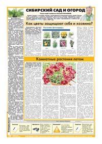 62 страница. Сибирский сад и огород