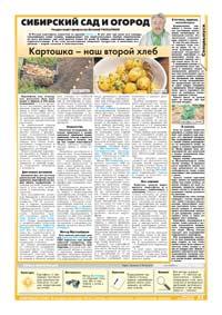 63 страница. Сибирский сад и огород