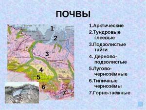 1 - Арктические. 2 - Тундровые глеевые. З - Подзолистые тайги. 4 - Дерново-подзолистые. 5 - Лугово-чернозёмные. 6 - Типичные чернозёмы. 7 - Горно-таёжные