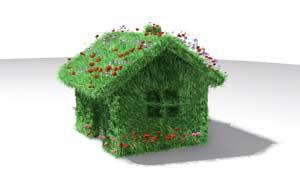 Экология в вашем доме